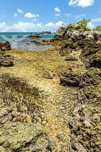 Vista da Baía de Camamu a partir da orla da ilha da Pedra Furada  - Camamu - Bahia (BA) - Brasil