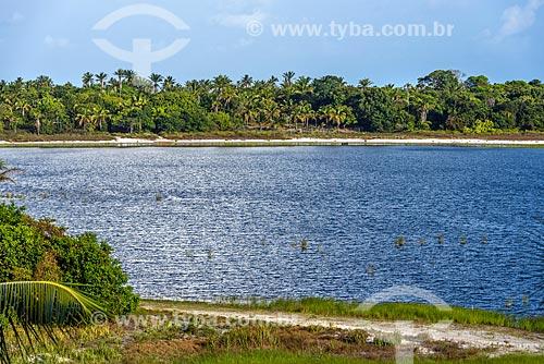 Vista da Lagoa do Cassange  - Maraú - Bahia (BA) - Brasil
