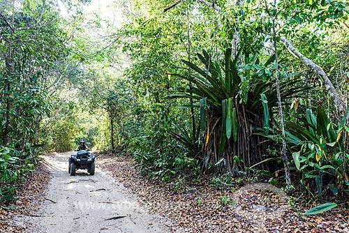 Passeio de quadriciclo na Trilha das Bromélias Gigantes  - Maraú - Bahia (BA) - Brasil