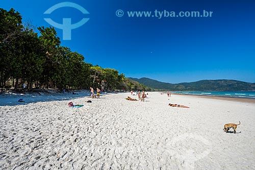 Banhistas na Praia de Lopes Mendes  - Angra dos Reis - Rio de Janeiro (RJ) - Brasil
