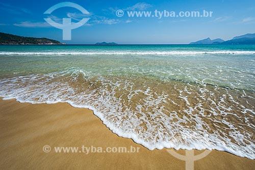 Vista da Ilha de Jorge Grego a partir da orla da Praia de Lopes Mendes  - Angra dos Reis - Rio de Janeiro (RJ) - Brasil