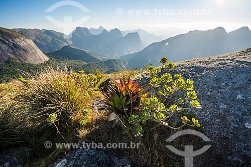 Vista de vegetação e montanhas no Parque Estadual dos Três Picos  - Teresópolis - Rio de Janeiro (RJ) - Brasil