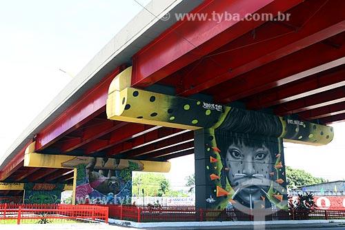 Grafite de Jonison Oliveira - também conhecido como Signus - com temas amazônicos  - Manaus - Amazonas (AM) - Brasil