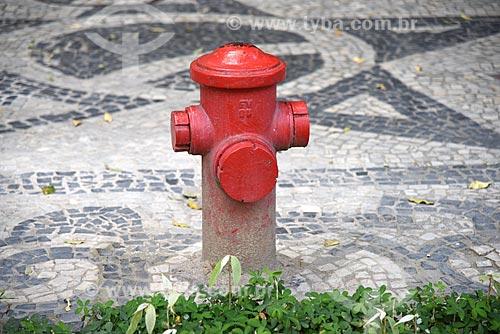 Detalhe de hidrante e calçamento em pedra portuguesa em frente ao Museu Nacional de Belas Artes  - Rio de Janeiro - Rio de Janeiro (RJ) - Brasil