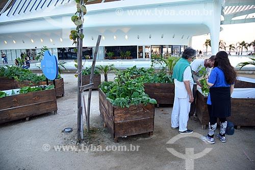 Horta do Amanhã - projeto itinerante para discute de forma prática a sustentabilidade no Museu do Amanhã  - Rio de Janeiro - Rio de Janeiro (RJ) - Brasil