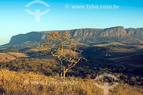 Vista de chapada no Parque Nacional da Serra da Canastra  - São Roque de Minas - Minas Gerais (MG) - Brasil
