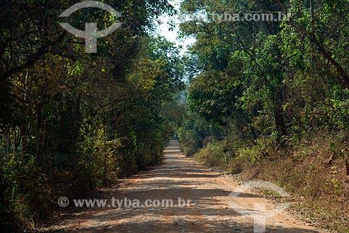 Estrada de Terra entre o Distrito de São José do Barreiro e a cidade de Vargem Bonita  - São Roque de Minas - Minas Gerais (MG) - Brasil