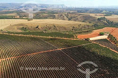 Foto feita com drone de plantação de café  - São Roque de Minas - Minas Gerais (MG) - Brasil