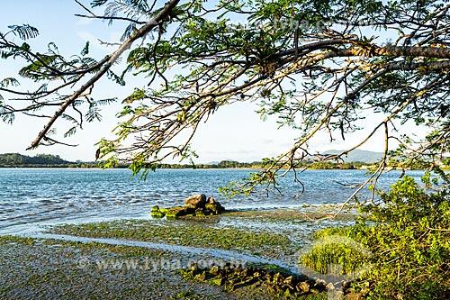 Vista da orla da Praia do Ribeirão da Ilha  - Florianópolis - Santa Catarina (SC) - Brasil