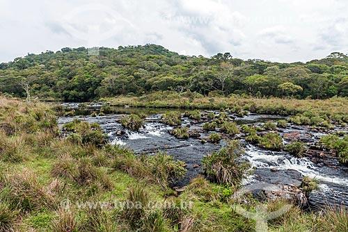 Vista do Arroio do Segredo no Parque Nacional da Serra Geral  - Cambará do Sul - Rio Grande do Sul (RS) - Brasil