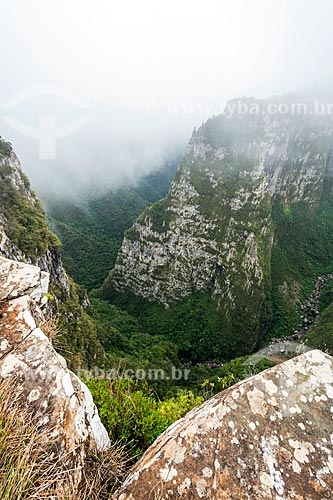 Vista do Cânion das Laranjeiras no Parque Nacional de São Joaquim  - Bom Jardim da Serra - Santa Catarina (SC) - Brasil