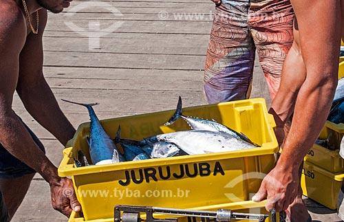 Detalhe de pescadores na Praia do Cais  - Niterói - Rio de Janeiro (RJ) - Brasil