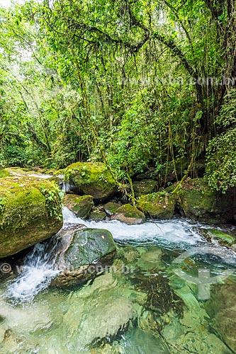 Rio Santo Antônio na Área de Proteção Ambiental da Serrinha do Alambari  - Resende - Rio de Janeiro (RJ) - Brasil