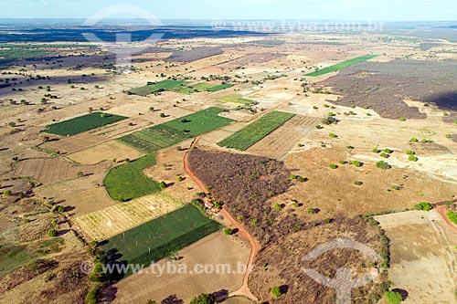 Foto feita com drone da caatinga do Planalto da Borborema com áreas de plantação  - Mauriti - Ceará (CE) - Brasil