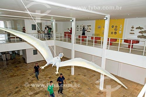 Interior do Museu de Paleontologia da Universidade Regional do Cariri  - Santana do Cariri - Ceará (CE) - Brasil