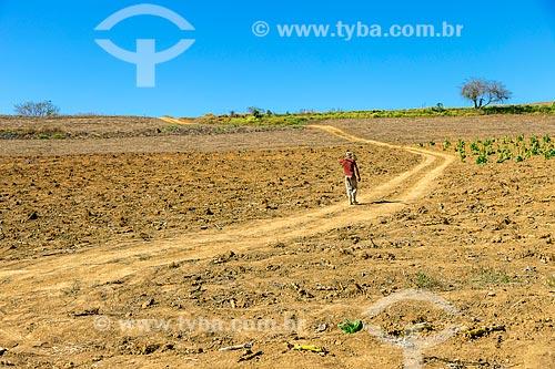 Trabalhador rural caminhando em área de plantio de fazenda  - Guarani - Minas Gerais (MG) - Brasil