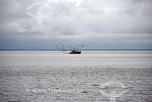 Vista de traineira na Baía de Guanabara cercada por aves marinhas  - Rio de Janeiro - Rio de Janeiro (RJ) - Brasil