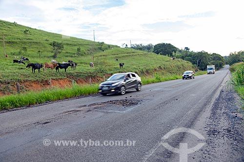 Má conservação do asfalto da Rodovia MG-126 entre as cidades de Guarani e Rio Novo com gado no pasto ao fundo  - Rio Novo - Minas Gerais (MG) - Brasil