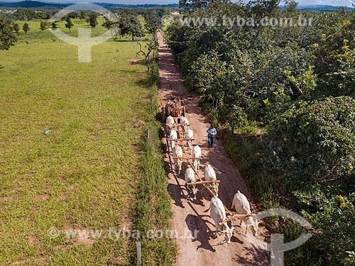 Foto feita com drone da carro de boi transportando madeiras  - Mossâmedes - Goiás (GO) - Brasil