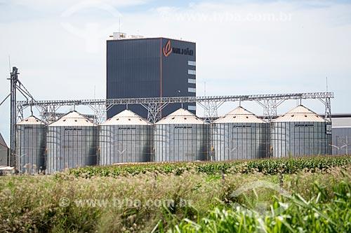 Vista de silos da empresa Milhão Alimentos a partir do Km 26 da Rodovia Jayme Câmara (GO-070) - sentido norte  - Goiás - Goiás (GO) - Brasil