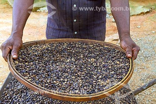Detalhe de peneira com sementes de umburana (Amburana cearensis) na zona rural da cidade de Guarani  - Guarani - Minas Gerais (MG) - Brasil