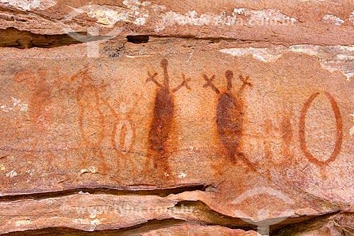 Detalhe de pintura rupestre - figura de animais - no Sítio Arqueológico Toca do João Arsena no Parque Nacional Serra da Capivara  - São Raimundo Nonato - Piauí (PI) - Brasil