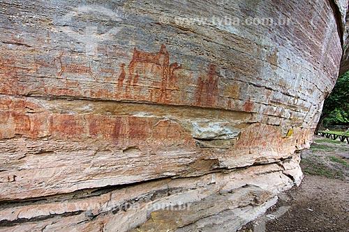 Detalhe de pinturas rupestres na Sítio Arqueológico Toca Pinga do Boi no Parque Nacional Serra da Capivara  - São Raimundo Nonato - Piauí (PI) - Brasil