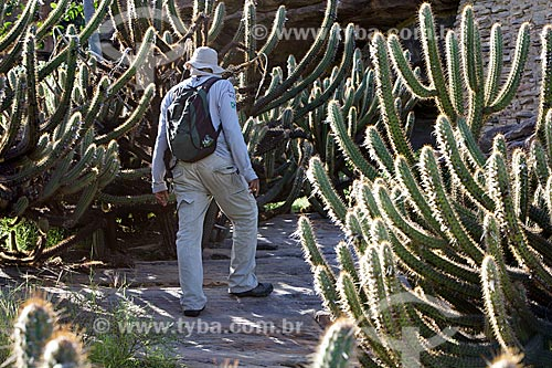 Cactos em trilha na Serra Branca no Parque Nacional Serra da Capivara  - São Raimundo Nonato - Piauí (PI) - Brasil