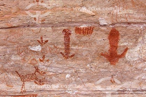 Detalhe de pinturas rupestres no Sítio Arqueológico Toca do João Arsena no Parque Nacional Serra da Capivara  - São Raimundo Nonato - Piauí (PI) - Brasil