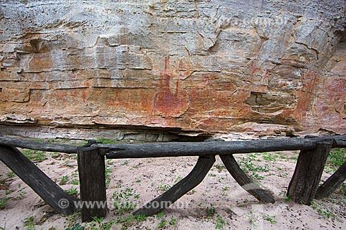 Detalhe de pinturas rupestres no Sítio Arqueológico Toca Pinga do Boi no Parque Nacional Serra da Capivara  - São Raimundo Nonato - Piauí (PI) - Brasil