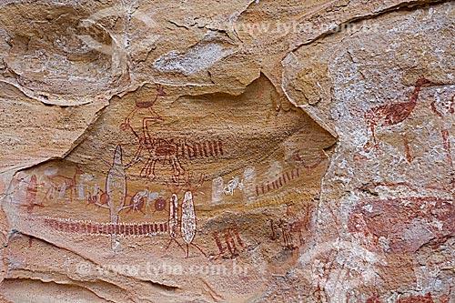 Detalhe de pintura rupestre - figura de animais - no Sítio Arqueológico Toca do Boqueirão da Pedra Furada no Parque Nacional Serra da Capivara  - Coronel José Dias - Piauí (PI) - Brasil