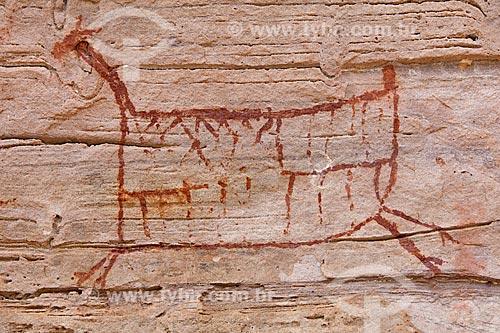 Detalhe de pintura rupestre - figura de animal - no Sítio Arqueológico Toca do João Arsena no Parque Nacional Serra da Capivara  - São Raimundo Nonato - Piauí (PI) - Brasil