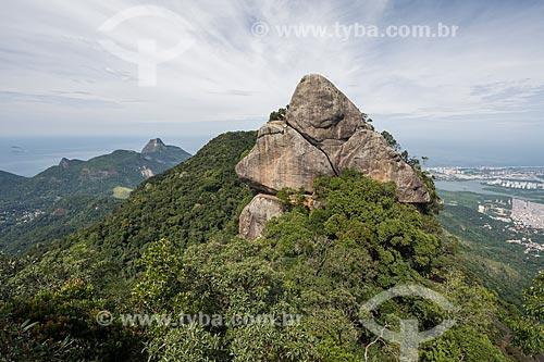 Vista do Bico do Papagaio no Parque Nacional da Tijuca  - Rio de Janeiro - Rio de Janeiro (RJ) - Brasil