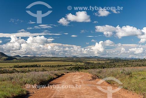 Vista de vegetação típica do cerrado na Chapada dos Veadeiros  - Alto Paraíso de Goiás - Goiás (GO) - Brasil