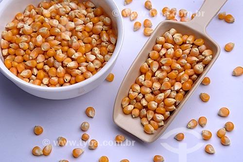 Detalhe de grãos de milho de pipoca (Zea mays everta)  - Brasil