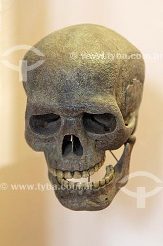Réplica de crânio de Homo sapiens em exibição no Museu Nacional - antigo Paço de São Cristóvão  - Rio de Janeiro - Rio de Janeiro (RJ) - Brasil