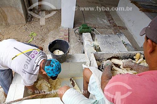 Trituração da mandioca na Farinhada - processo artesanal para a produção da farinha de mandioca  - Cajueiro da Praia - Piauí (PI) - Brasil