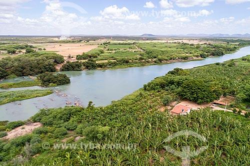 Foto feita com drone de bananeiras às margens do Rio São Francisco no Arquipélago de Assunção - divisa natural entre Bahia e Pernambuco  - Cabrobó - Pernambuco (PE) - Brasil