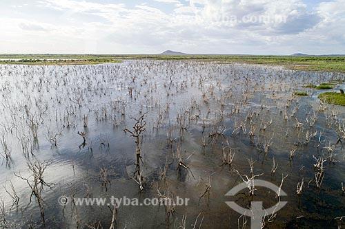 Foto feita com drone da Lagoa de Itaparica  - Floresta - Pernambuco (PE) - Brasil
