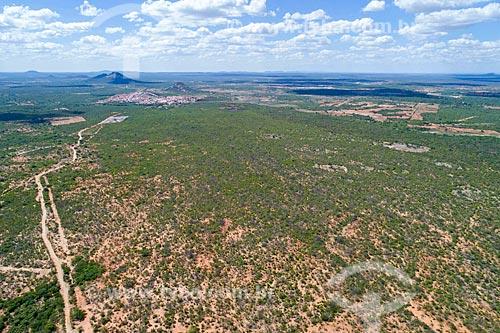Foto feita com drone de vegetação típica da caatinga depois de pequena chuva  - Floresta - Pernambuco (PE) - Brasil