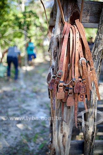 Detalhe de correias de couro numeradas que serão usadas na manifestação cultural conhecida como pega de boi no mato  - Demerval Lobão - Piauí (PI) - Brasil