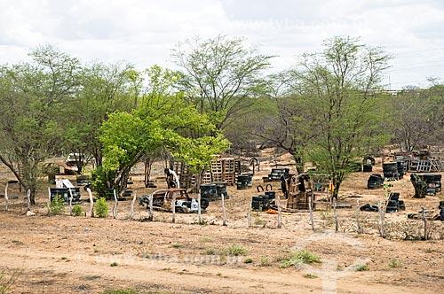 Ferro-velho em vegetação típica de caatinga  - Cabrobó - Pernambuco (PE) - Brasil