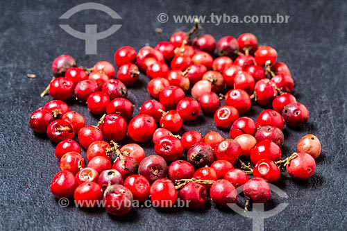 Detalhe de sementes de aroeiras-vermelha (Schinus terebinthifolius)  - Florianópolis - Santa Catarina (SC) - Brasil