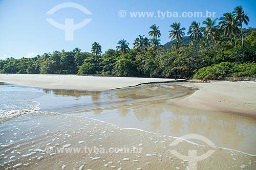 Vista da orla da Praia de Lopes Mendes  - Angra dos Reis - Rio de Janeiro (RJ) - Brasil