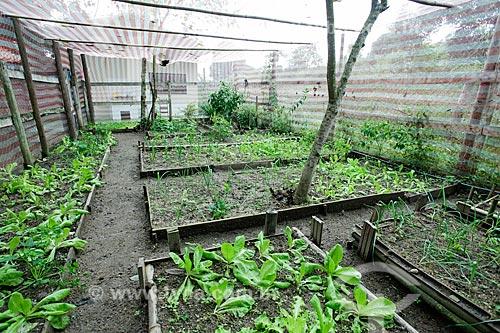 Horta do Sítio Triunfo  - Maricá - Rio de Janeiro (RJ) - Brasil