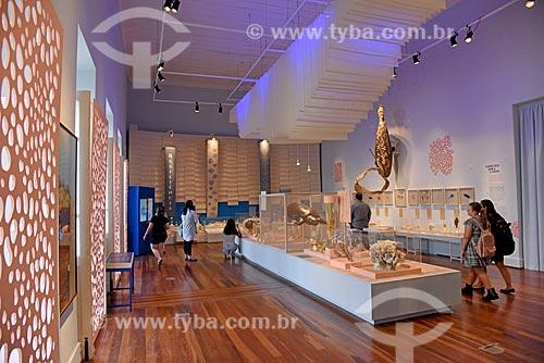 Corais em exibição no Museu Nacional - antigo Paço de São Cristóvão  - Rio de Janeiro - Rio de Janeiro (RJ) - Brasil