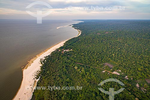 Foto aérea da orla do Rio Tapajós na Floresta Nacional do Tapajós  - Santarém - Pará (PA) - Brasil