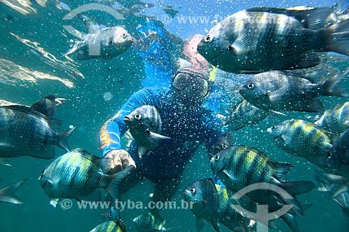 Foto subaquática de mergulhador com cardume na Baía de Paraty  - Paraty - Rio de Janeiro (RJ) - Brasil