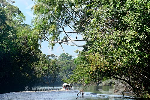 Voadeira - embarcação regional - no Igarapé Abuará  - Santa Isabel do Rio Negro - Amazonas (AM) - Brasil