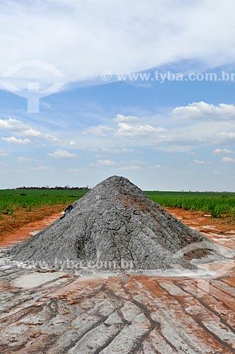 Calcário para correção do solo na zona rural da cidade de Frutal  - Frutal - Minas Gerais (MG) - Brasil